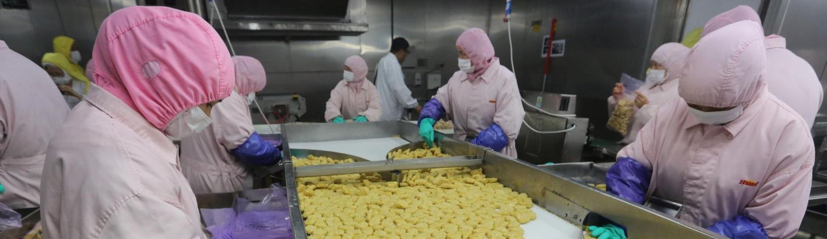 Ασφάλεια & Υγιεινή Τροφίμων: Από την Παραλαβή μέχρι την Παραγωγή Τελικών Προϊόντων (επίπεδο ΙΙ - στοιχεία αυτοέλεγχου βάση HACCP)